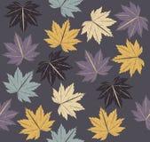 Стильная безшовная картина с кленовыми листами осени Стоковое фото RF