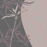 Стильная флористическая предпосылка с sprig и лист Стоковая Фотография RF