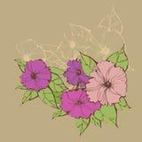 Стильные флористические предпосылки с петуньями Стоковые Изображения RF