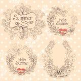 Стильный винтажный флористический ярлык с бабочками, пчелами. Лето Hellow Стоковое Изображение