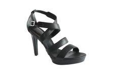 Стильный женский ботинок Стоковое Изображение RF