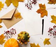 Стильный состав письма, тыкв, листьев осени, ягод Взгляд сверху на белой предпосылке Положение квартиры осени стоковое изображение rf