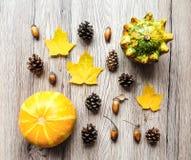 Стильный состав тыкв, листьев осени, конусов Взгляд сверху на деревянной предпосылке Положение квартиры осени стоковые фотографии rf