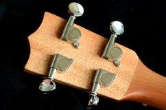 Стиль гитары Гаваи гавайской гитары. Стоковая Фотография
