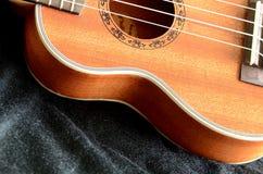 Стиль гитары Гаваи гавайской гитары. Стоковое фото RF