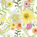 Стиль картины акварели картины цветков тропический безшовный на w бесплатная иллюстрация