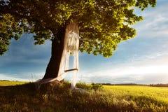 Стиль красоты лета Стоковые Изображения