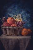 Стиль натюрморта сухого плодоовощ в старой корзине Стоковые Изображения