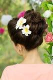 Стиль причёсок девушки, предпосылка от задней части Стоковое Изображение