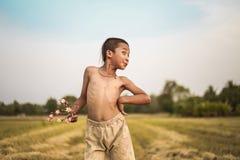 Стиль причёсок мальчика тайский старый Стоковое фото RF