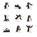 стиль шаржа пингвина плоский в комплекте действия бесплатная иллюстрация