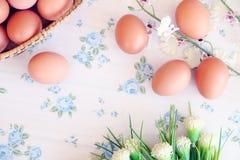 Стиль яичек старый винтажный стоковое изображение rf