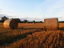 Стога сена на поле лета Сжатое сено на красивом поле лета o стоковое изображение rf