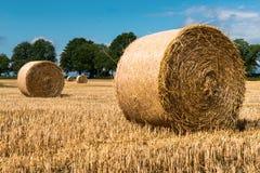 Стога сена на поле в солнечном дне Стоковые Фотографии RF