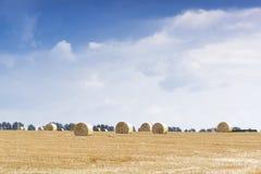 Стога сена на поле стоковые фото