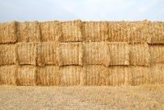 стога сена поля стоковые фотографии rf