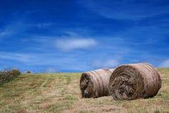 Стога сена Стоковое фото RF