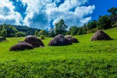 Стога сена Стоковая Фотография RF