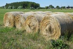 Стога сена Стоковое Изображение RF