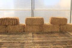 Стога сена Стоковые Изображения RF