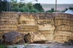 Стога сухого сена Стоковая Фотография RF