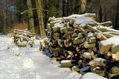 Стог древесины в зиме Стоковые Изображения