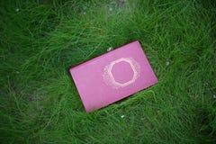 Стог закрытых книг внешних Книги в лесе Стоковая Фотография