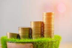 Стог золотой монетки на искусственной траве в баке, на деревянном столе Стоковое фото RF