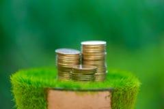 Стог золотой монетки на искусственной траве в баке, с зеленой природой Стоковое фото RF