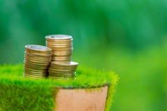 Стог золотой монетки на искусственной траве в баке, с зеленой природой Стоковое Изображение RF
