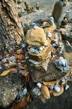 Стог камней камушка Стоковая Фотография RF