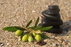 стог камушков зеленых оливок ветви Стоковое Изображение RF