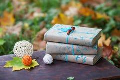 Стог книг в парке Стоковые Фото