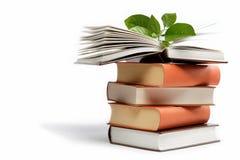 Стог книг на белизне. Стоковые Фотографии RF