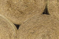 Стог круглых haybales 2 Стоковые Фото