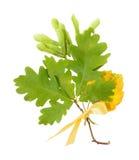 стог листьев осени Стоковое Фото