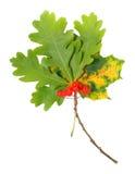 стог листьев Стоковые Изображения
