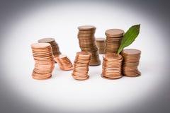 Стог монеток изолированных на белой предпосылке с зеленым растением Стоковое Изображение RF