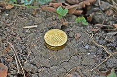 Стог монеток Стоковые Изображения RF