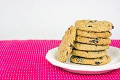 Стог печенья изюминки овсяной каши Стоковое Фото