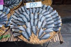 Стог посоленных высушенных малых рыб которые имеют осфронемовых Fi высушенной кожи Стоковое Изображение