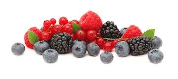 Стог различных ягод с зеленым цветом выходит (изолированный) Стоковые Фото