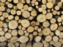 Стог древесины для огня в зиме Стоковые Изображения