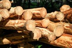 Стог древесины Стоковые Изображения