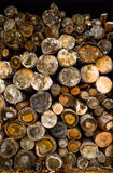 Стог древесины Стоковые Фото