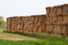 Стог связок сена Стоковые Изображения RF