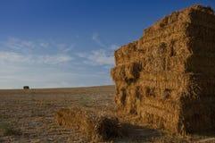 Стог связок соломы в сжатом поле стоковые изображения rf
