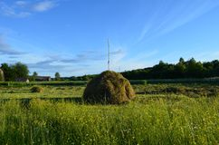 Стог сена в поле около реки России Онеги стоковые изображения rf