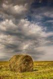 Стог сена в поле Стоковое Изображение