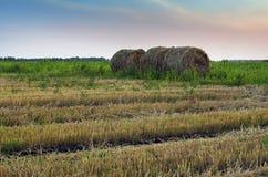 Стог сена в сельской России Стоковые Фотографии RF